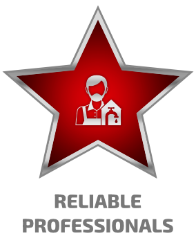 vp icon - reliable professionals - Copy