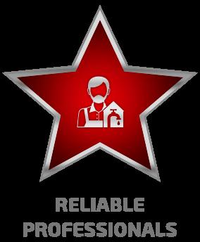 vp-icon-reliable-professionals-Copya